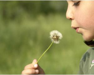 Tratamiento-de-la-rinitis-alérgica-en-los-niños