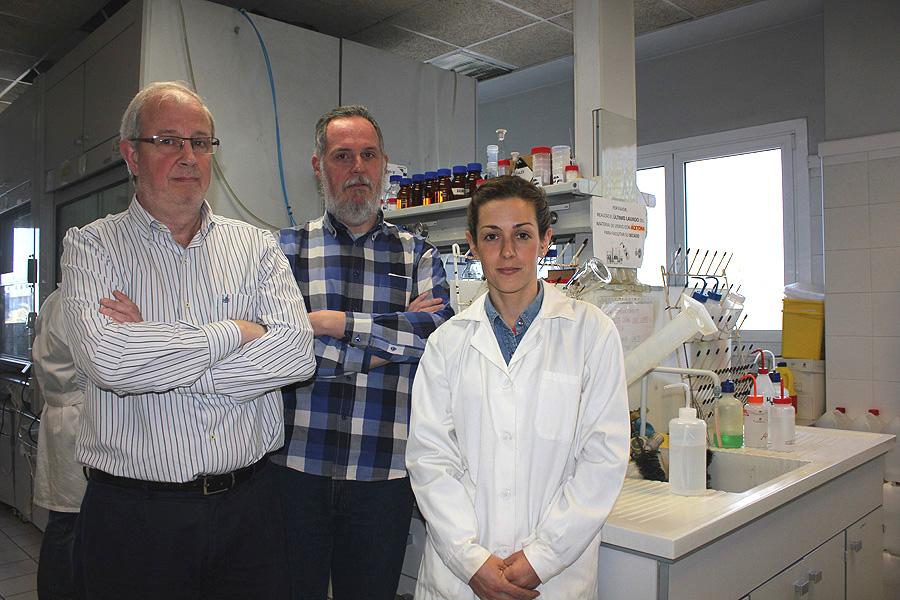Los investigadores Ramón Martínez Máñez, Félix Sancenón y Cristina de la Torre Fuente: CIBER-BBN / Centro de Investigación Biomédica en Red (CIBER)