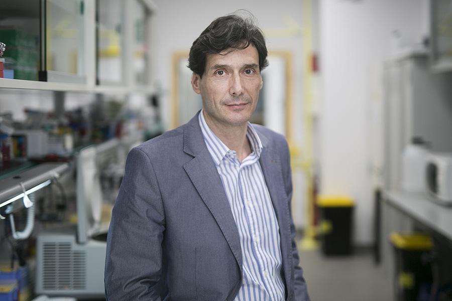 El investigador ICREA Manuel Serrano Fuente: IRB Barcelona