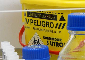 Fuente: www.farmacosalud.com / IMAGEN DE ARCHIVO Gentileza del Centro Nacional de Microbiología. Instituto de Salud Carlos III de Madrid
