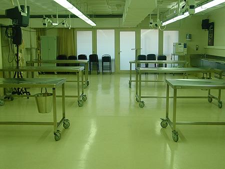 Un espacio del Servicio de Donación de Cuerpo a la Ciencia Fuente: Dra. Miguel / UB