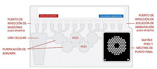 Esquema del panel Fuente: bioMérieux / ATREVIA
