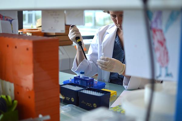 La combinación NGS + IHQ, avance diagnóstico en tumores de origen desconocido Fuente: OncoDNA / Alive comunicación