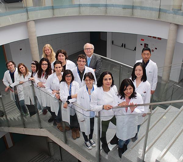 Grupo del CIBERONC en el Hospital General Universitario de Valencia liderado por Carlos Camps Fuente: CIBERONC / Centro de Investigación Biomédica en Red (CIBER)