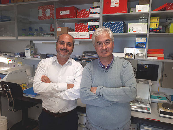 Alberto Ocaña y Atanasio Pandiella, investigadores del CIBERONC y coordinadores del estudio Fuente: CIBERONC / Centro de Investigación Biomédica en Red (CIBER)